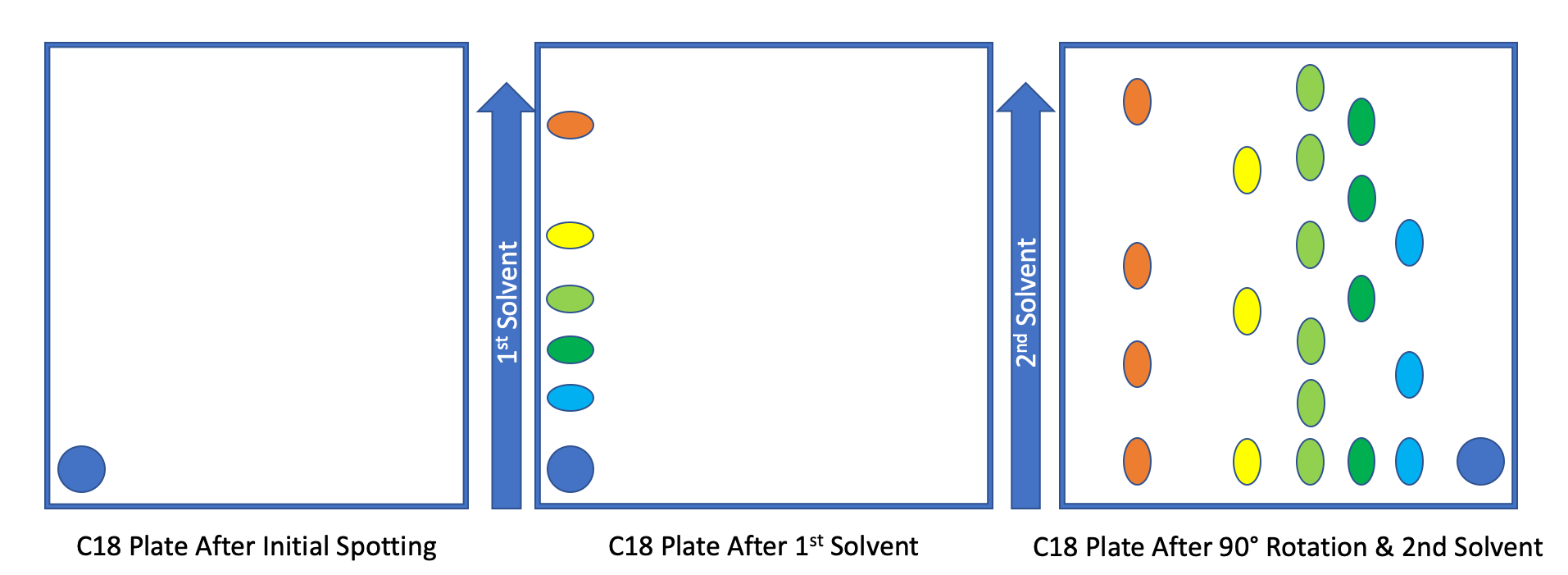 2D-Thin Layer Chromatography schematic