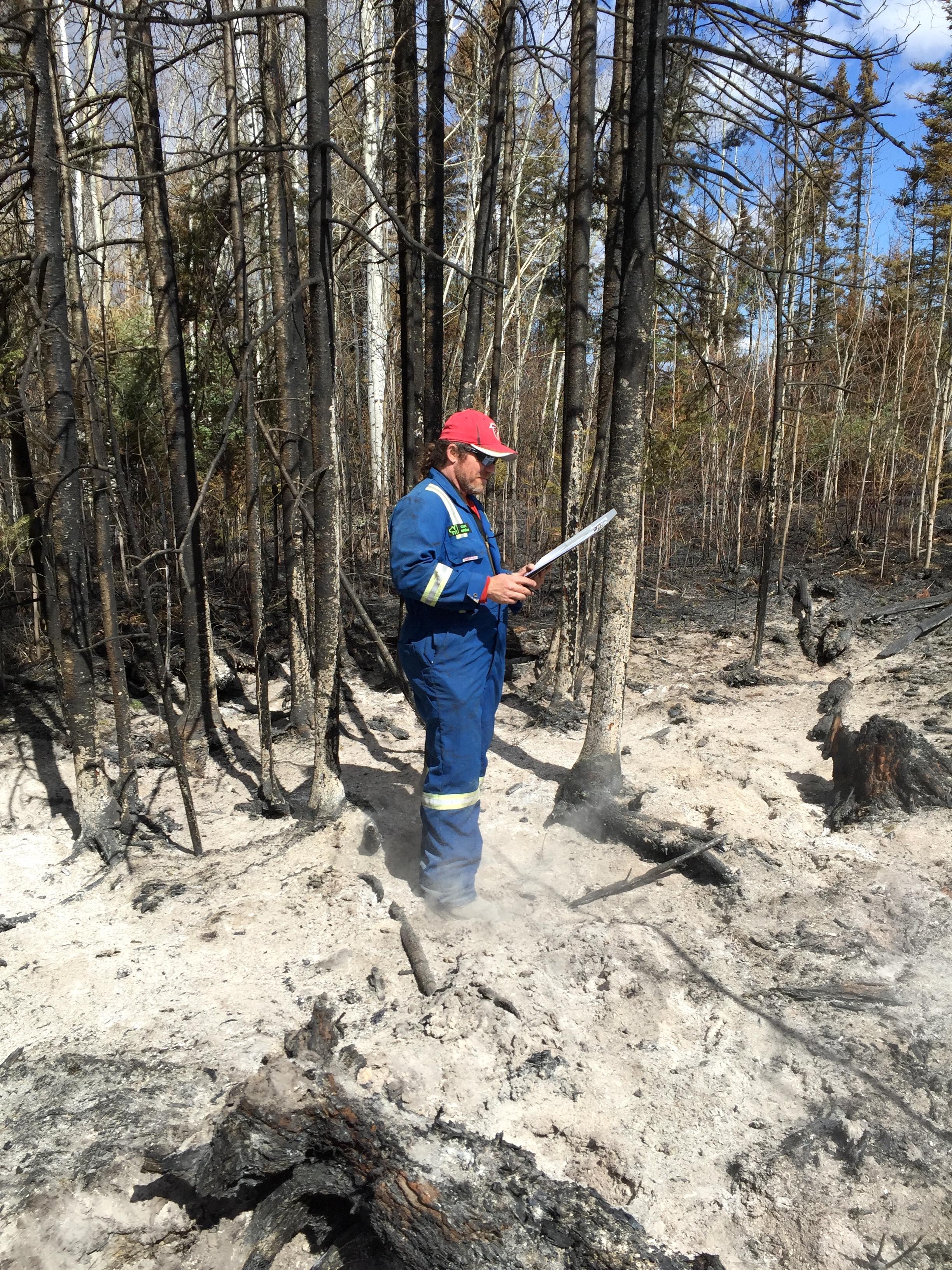 Wildfire Arson Investigation